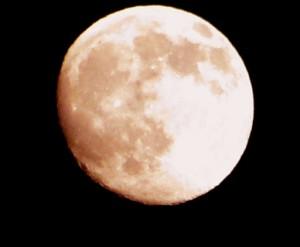 Pink+Moon